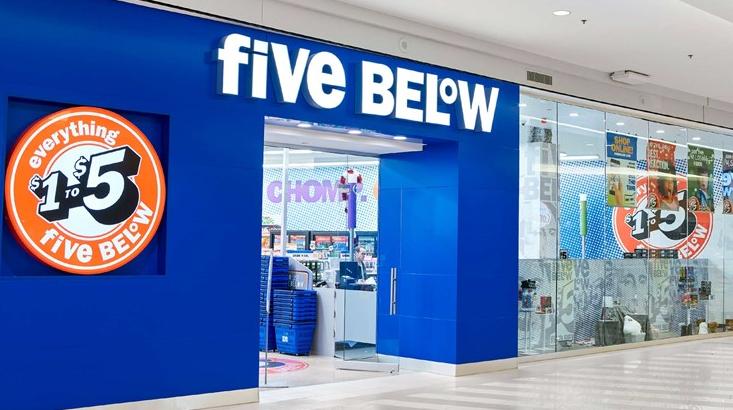 Five Below Survey