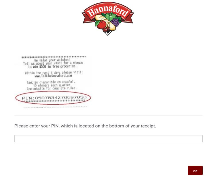 Hannaford survey homepage