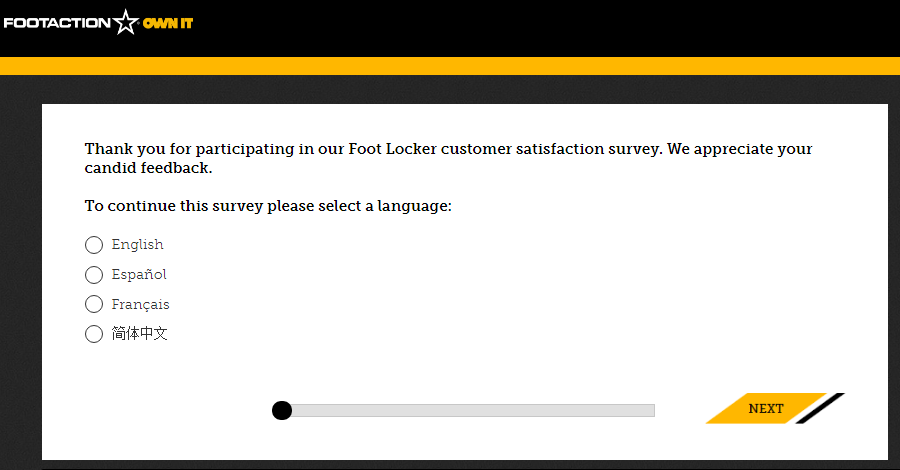 Foot Action Survey Homepage