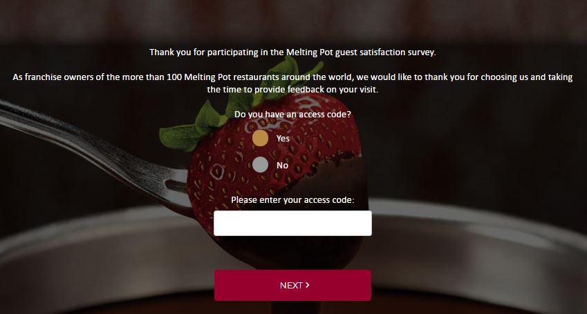 Melting Pot Customer Experience Survey